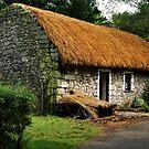 irish cottage.. by Michelle McMahon