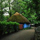 blue cottage.. by Michelle McMahon
