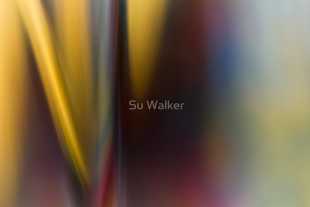 Glass Abstract #3 Carousel by Su Walker
