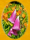 Foxgloves and Daylilies by MotherNature
