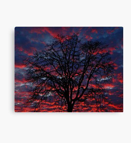 Lake Oswego Sunset Canvas Print
