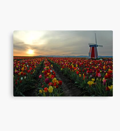 My Touch Of Holland Canvas Print