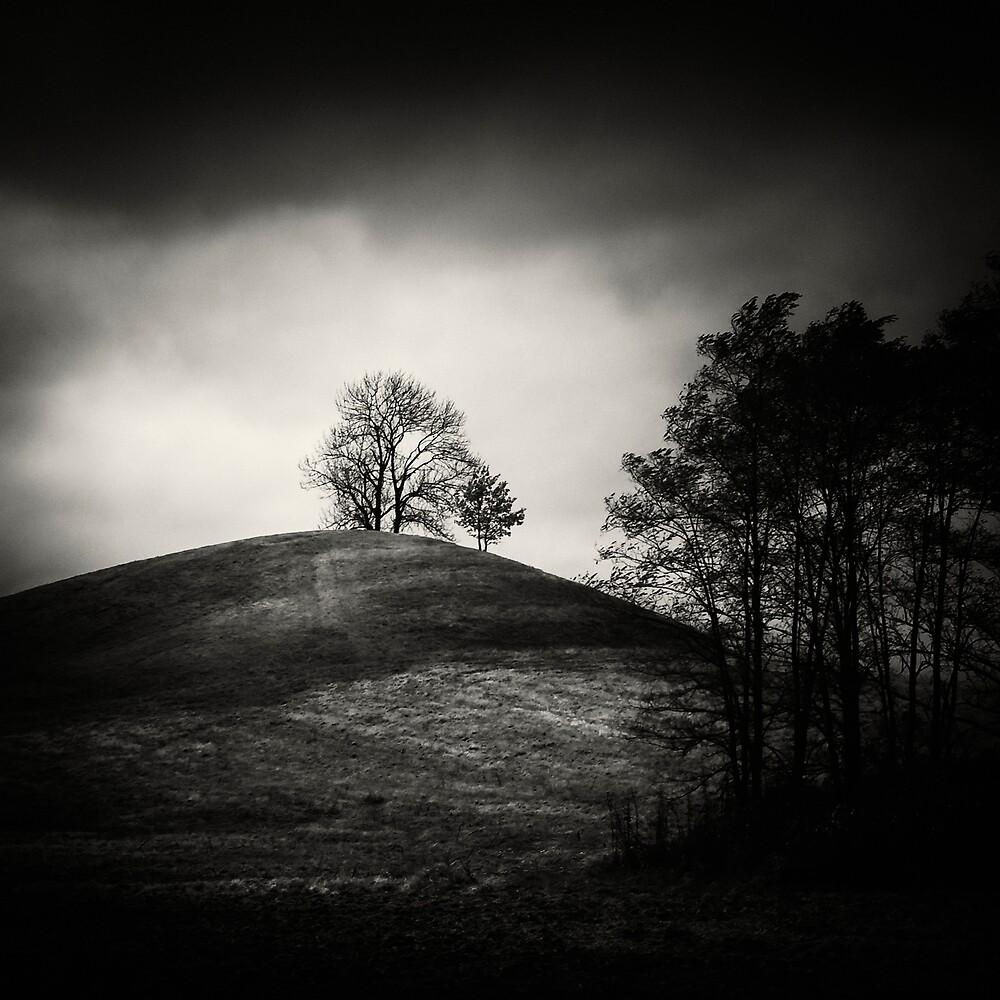 Tobias hill by Jaromir