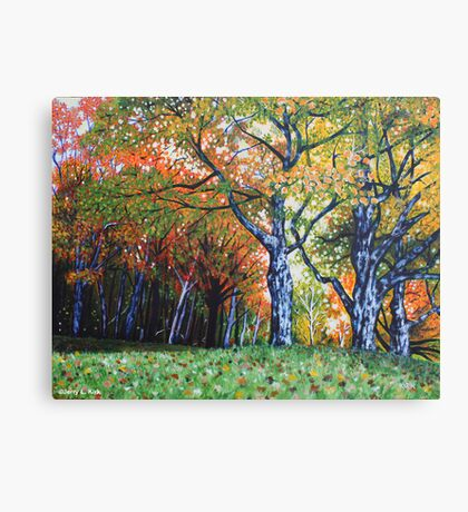 'Autumn Trees Along Bass Lake'  Canvas Print