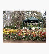 Gardeners Paradise Photographic Print