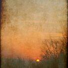 ...evening awaken... by Eugenio