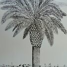 Palm Tree at the wedge by Sally Sargent