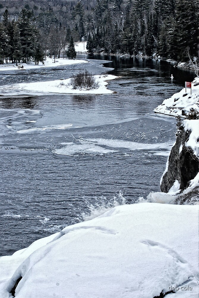 Muskoka River by deb cole