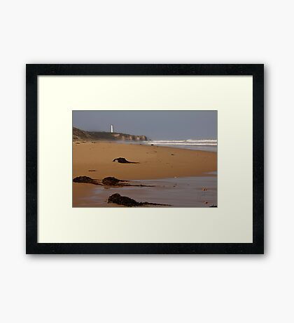 The Split Point Lighthouse Framed Print