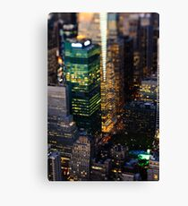 It's a small, small world... Canvas Print