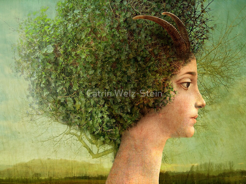 mystic tree by Catrin Welz-Stein