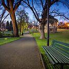 Early Morning in St Davids Park, Hobart, Tasmania #4 by Chris Cobern