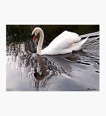 The Lady Bird! Photographic Print