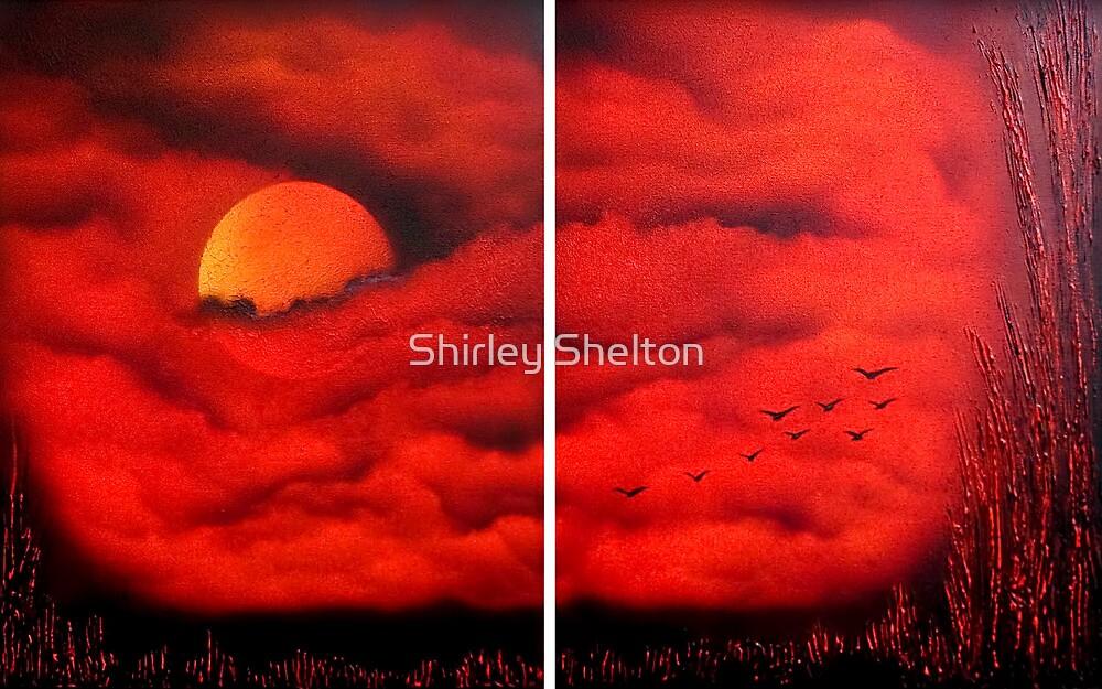 Sun Peep by Shirley Shelton