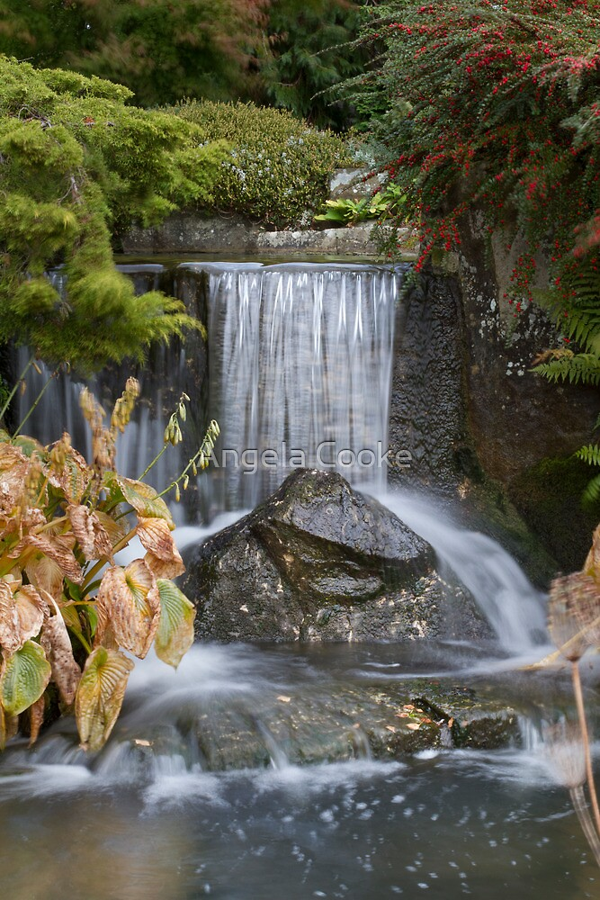 Waterfall at Kilver Court by Angela Cooke