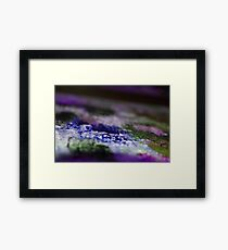 BlueWaters Framed Print