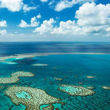barrier reef  by BecBrace
