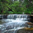 Upper Wentworth Falls by Andrew McNeil