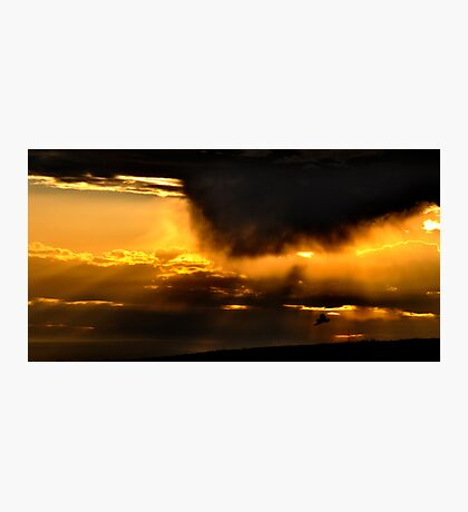 Fly into the sunset Photographic Print