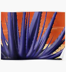Blue Agave Paint Poster