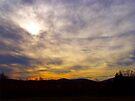 Morning Sun by Ginny York