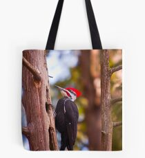 Pileated Woodpecker - Ottawa, Ontario Tote Bag