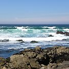 Big Waves Come In by Sandra Gray