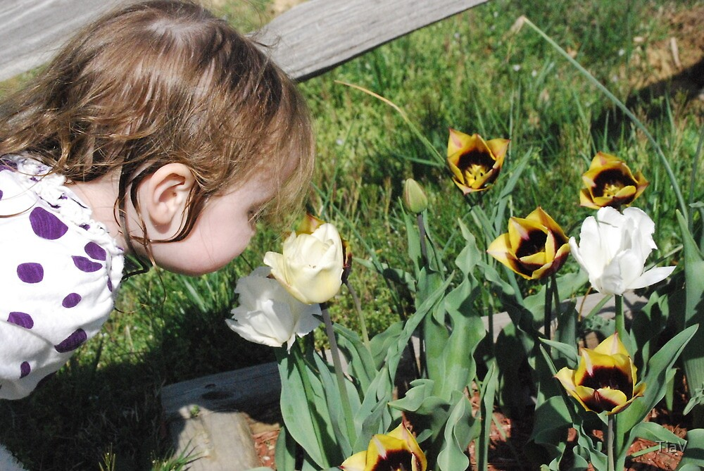 Stopping to Smell the Tulips by TiaV