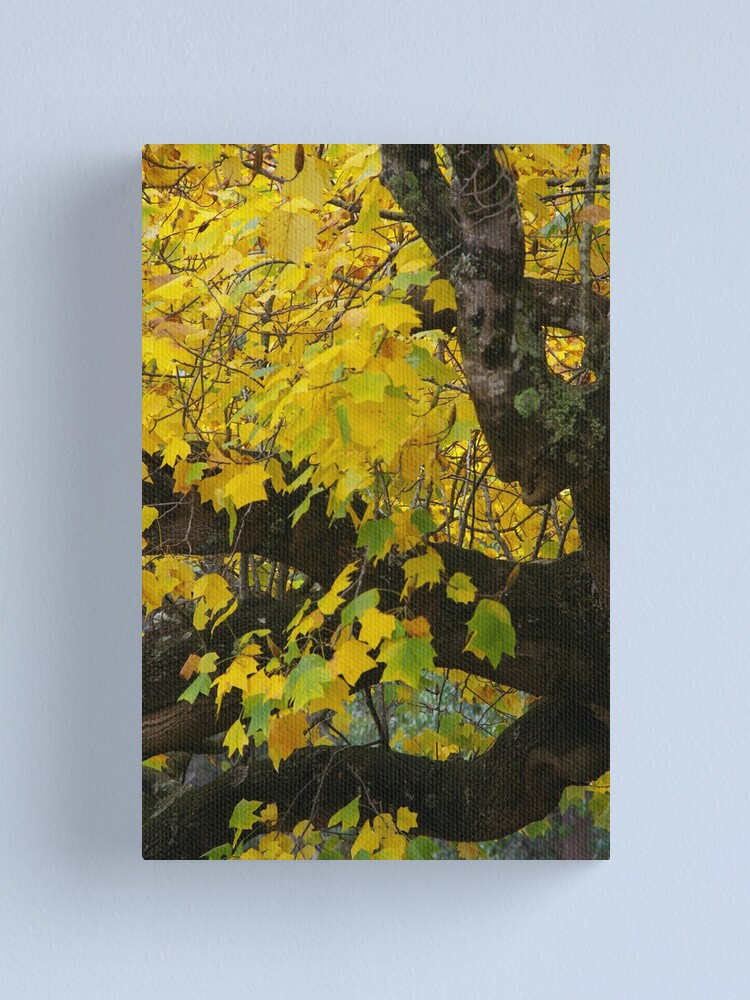 Alternate view of Burnished By Autumn's Peerless Brush Canvas Print