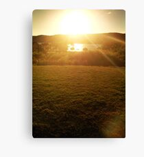 Afternoon Glory Canvas Print