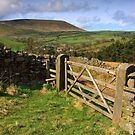 Five bar gate and Pendle hill by Shaun Whiteman