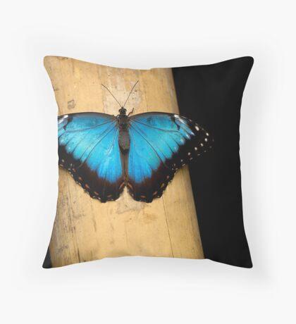 Black'n Blue Throw Pillow