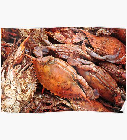 Crabs Poster