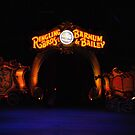 Ringling Brothers & Barnum and Bailey Circus by Robin Black