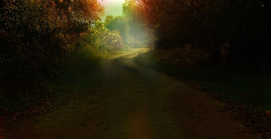 mistique country road by Mustafa UZEL