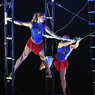 Flying Trapeze by Robin Black