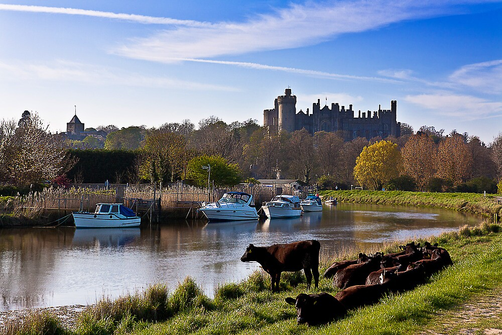 Arundel Castle From The River by Leon Ritchie