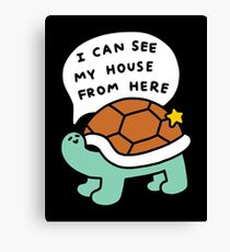 Turtle House Canvas Print