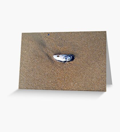 Shell washed up on the beach by wave Greeting Card