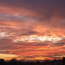 Sunset from Hawthorn by Cahl Schroedl