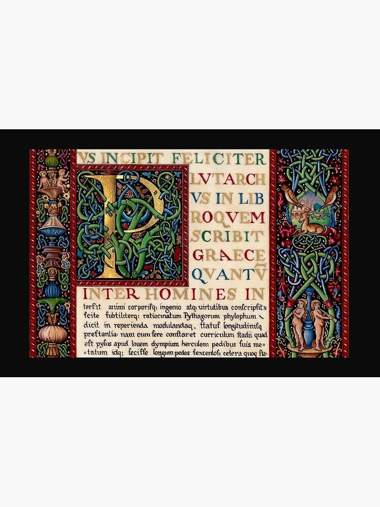 Renaissance manuscript by TCilluminate