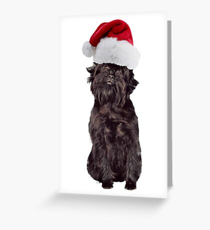 Affenpinscher Christmas Greeting Card