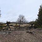 Farmland- Ennismore Ontario Canada by Tracy Wazny