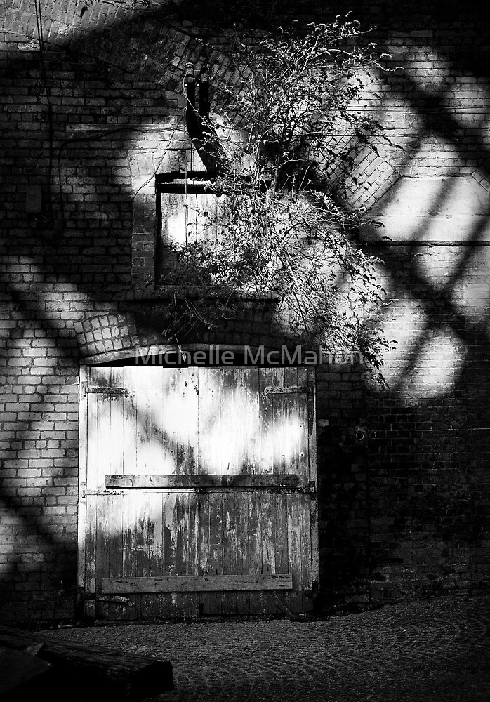 shadows.. by Michelle McMahon