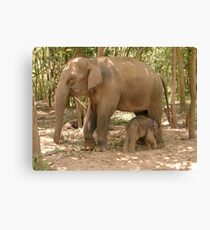 """Mother and Baby"" Canvas Print"