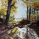 After the Autumn Rain  by Paula Oakley