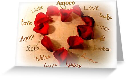 Love In Any Language by Kathy Bucari