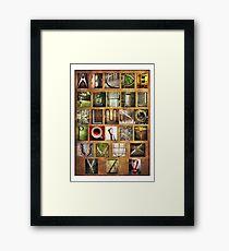 Alphabet Framed Print