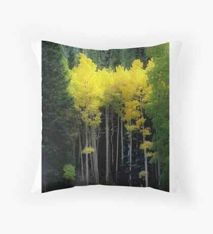 Aspen in RMNP Throw Pillow