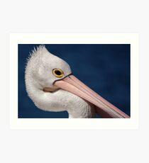 Pelican, Head Shot Art Print